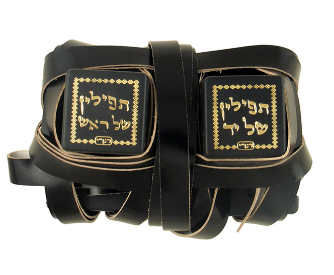 Standard Tefillin Peshutim with free bag
