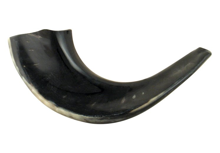 Small Black Rams Horn Shofars – Polished
