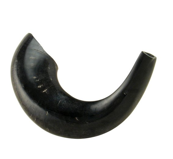 Medium Black Rams Horn Shofars – Polished
