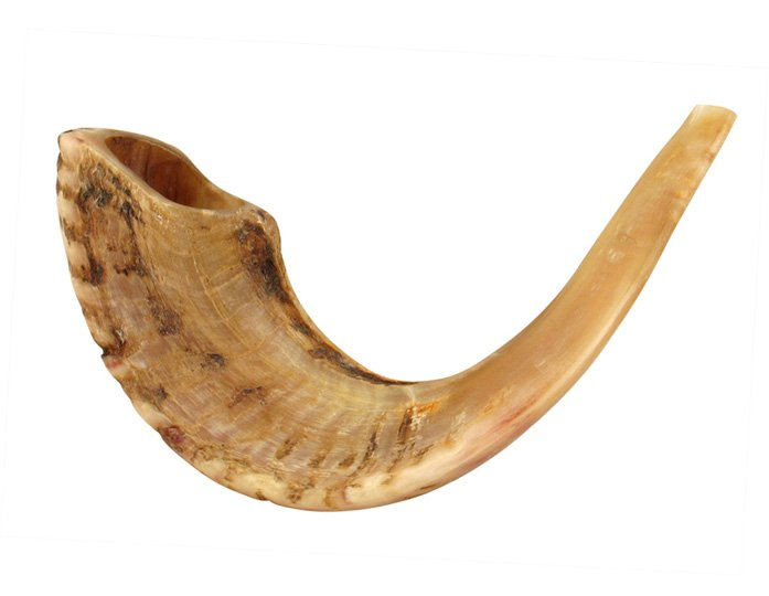 Large Rams Horn Shofars – Natural
