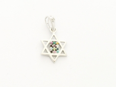 Gold Rhodium Mini Twelve Tribes Star of David Pendant