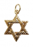 Gold Filled Textured Star of David Pendant