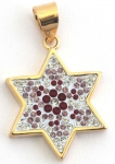 Ruby and Zircon Star of David Pendant