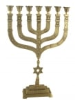 Extra Large Twelve Tribes Star of David Menorah