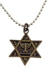 Israeli Army Star of David Bronze Pendant   Menorah