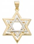 Gold Filled Large Two Tone Star of David Pendant