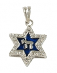 Chai and Star of David pendant in blue enamel