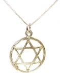 Sterling Silver Star of David Pendant in Circle