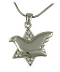 Dove of Peace Star of David Rhodium Necklace