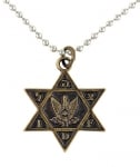 Israel Air Force Star of David Bronze Pendant