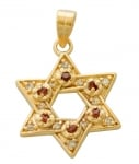 Gold Filled Star of David Garnet Pendant