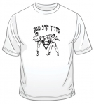 Krav Maga Martial Arts Instructor T Shirt