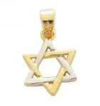 Gold Filled Mini Star of David Pendant