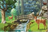 Psalms Poster   As the Deer Pants for Water
