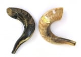 Shofar for Kids