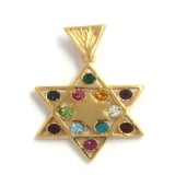 Gold Filled Star of David  With Twelve Tribes Pendant