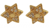 Gold Filled Star of David Earrings