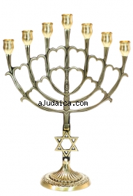 Seven Branch Large Cup Menorah   Star of David by aJudaica