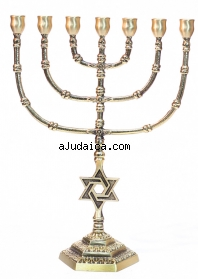 Seven Branch Large Cup Menorah by aJudaica
