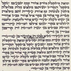 Judaism: Reading the Torah
