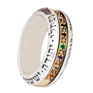 Twelve Tribes Rotating Ring by HaAri by aJudaica