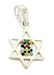 Gold Filled Rhodium Mini Twelve Tribes Star of David Pendant