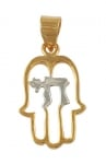 Gold Filled Two tone Hamsa