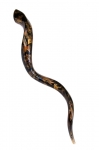 Collectors Hand Painted Yemenite Shofar   Gold Grapevine