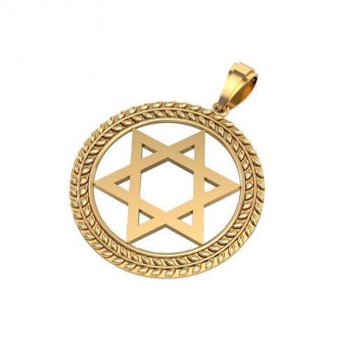 14K Gold Star of David Pendant, Circular Frame with Olive Leaf Decoration