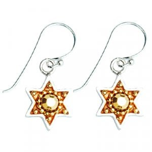 Silver Earrings with Star of David by Ester Shahaf