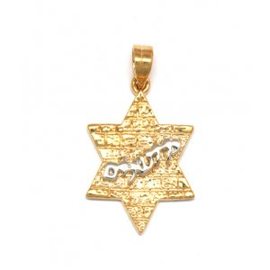 Gold Filled Western Wall Pendant - Star of David