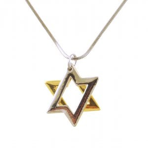 Rhodium Two tone 2 Layer Star of David Necklace