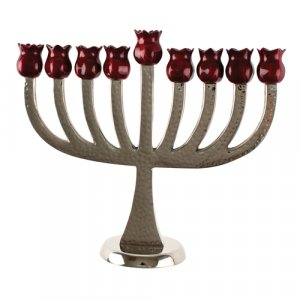 Burgundy and Silver Pomegranate Cups on Chanukah Menorah - Aluminum