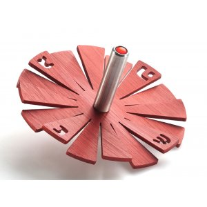 Adi Sidler Brushed Aluminum Chanukah Dreidel, Flying Petals Design - Red