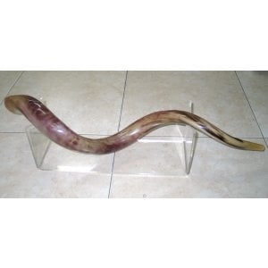 Extra Large Lucite Stand - for Yemenite Shofars 40-52 Inches Length