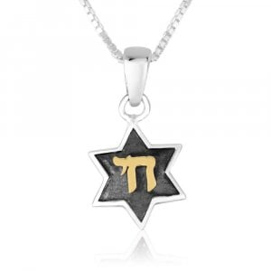 Sterling Silver Pendant Necklace - Star of David with Gold Plated Chai