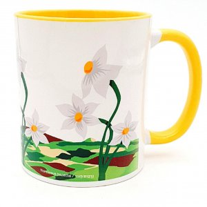 Barbara Shaw Coffee Mug – White Crocus, Winter Flower of Israel