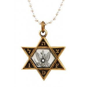 Israeli Army Star of David Bronze Pendant - Air Force