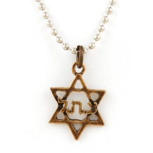 "Israeli Army Star of David ""ZHL"" Bronze Pendant"