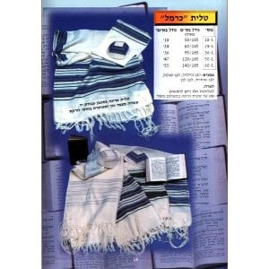 Talitnia Carmel Tallit Prayer Shawl
