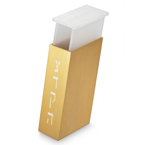 Adi Sidler Contemporary Brushed Aluminum Tzedakah Charity Box - Gold