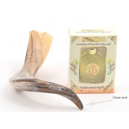 Anointing Shofar Made of a Natural Ram's Horn + Galilee Anointing Oil Frankincense and Myrrh