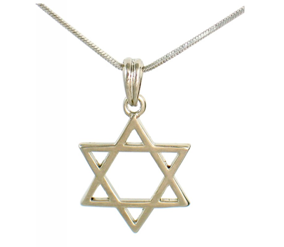 Classic rhodium silver necklace with magen david pendant ajudaica classic rhodium silver necklace with magen david pendant aloadofball Choice Image