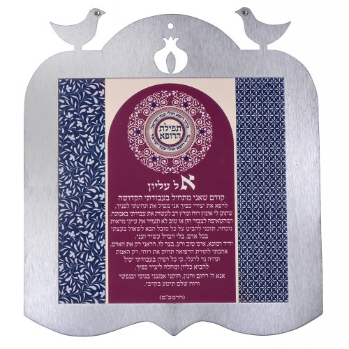 Dorit Judaica Decorative Wall Plaque Doves Frame - Physicians Prayer Hebrew