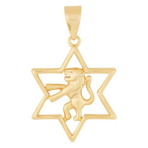 Gold Filled Lion of Judah Star of David Pendant