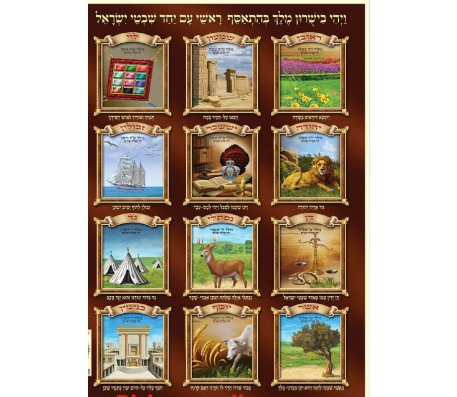 Laminated Colorful Wall Poster Twelve Tribes Of Israel With