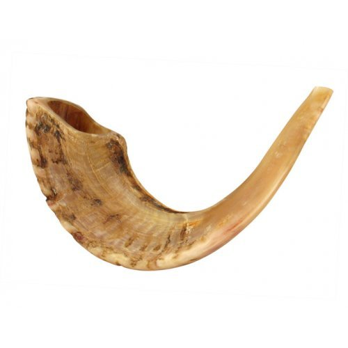 Large Rams Horn Shofar with Light Shades - Natural Finish