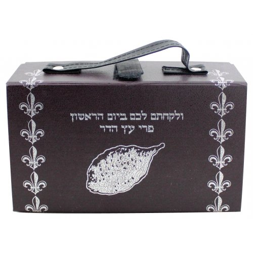 Plastic Etrog Box with Silver Design