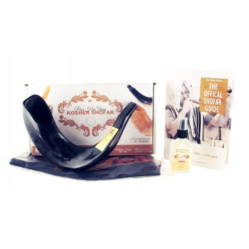 Polished Black Ram's Horn Shofar with Bag and Cleaning Spray Gift Set