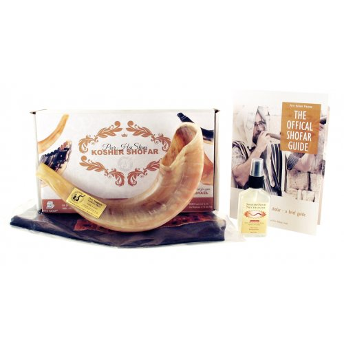 Polished Ram's Horn Shofar with Bag and Cleaning Spray Gift Set